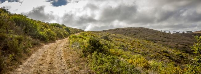Tygerberg hill 1