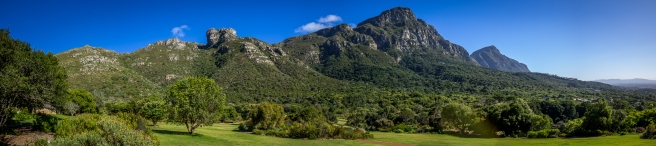 Kirstenbosch - Panoramic-1