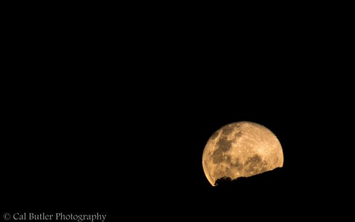 Full Moon-3