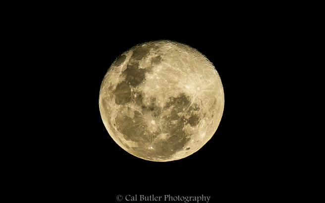 Full Moon-6