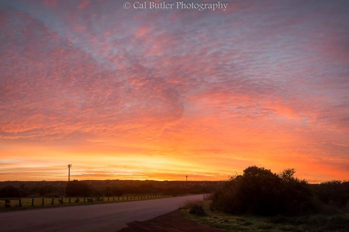 West Coast Sunrise 1