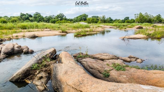 Leopard Hills-9.jpg